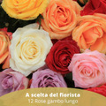 One Dozen medium stemmed Red Roses