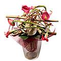Modern Bouquet Rania