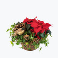 Red Christmas Basket - Medium
