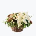 White Christmas basket - Medium