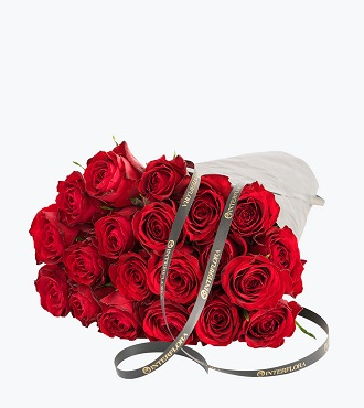 20 Red Roses, Gift Wrapped