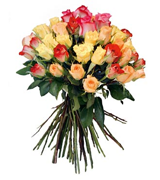 Bouquet of Mixed Color Roses