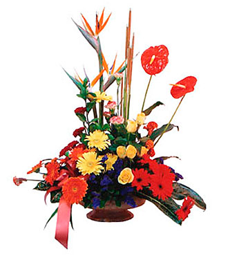 Arrangement of Mixed Colored Flowers