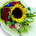 Seasonal Mixed Cut Flowers