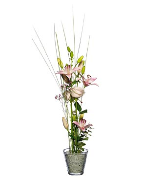 Lily & Rose Arrangement