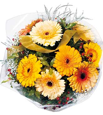 Bouquet de gerberas assortis