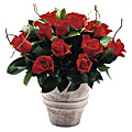 Composition de roses classiques
