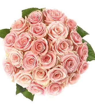 Bouquet de 25roses