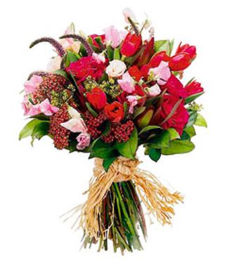 Fleurs coupées assorties