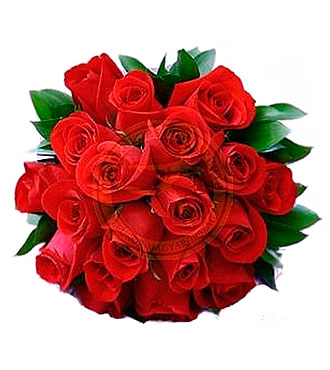 Bouquet of 25 Short Stem Red Roses