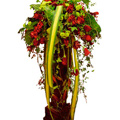 Royal Flower Arrangement