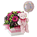 Girl! Flowers, Bear and Balloon