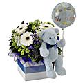 A Boy!  Flowers, Bear and Balloon