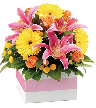 Bright Box Arrangement