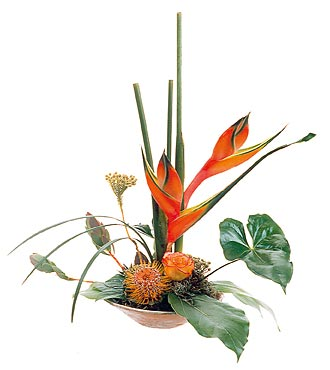 Tropical Arrangement of Cut Flowers