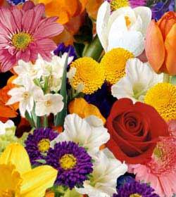 Bouquet créé par un fleuriste