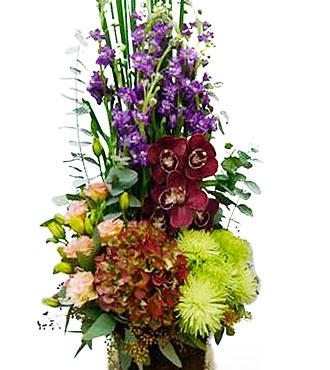 Arrangement of Cut Flowers Multi Colored