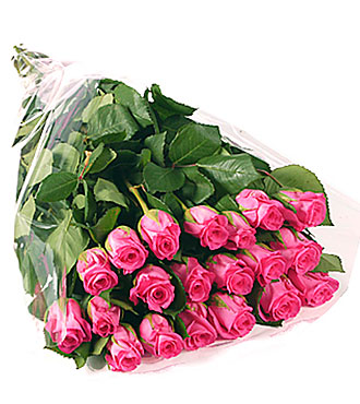 Bunch Of 20 Stems Pink Roses