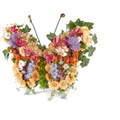 Funeral Bouquet Butterfly