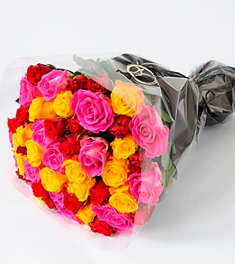 Bright Colored Roses