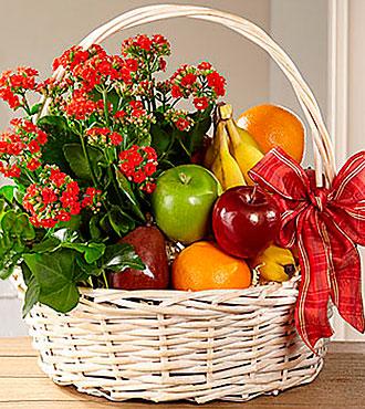 Garden's Paradise™ Basket