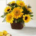 FTD Perfect Sun Bouquet