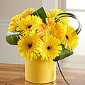 Sunny Surprise™ Bouquet