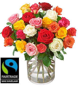 Bouquet of Roses (24 Roses) with Max Havelaar-Roses - Small Blooms