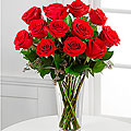 The Long Stem Red Rose Bouquet - Vase Included