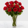 Long Stem Red Rose