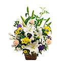 Large Obon Buddhist memorial service sympathy arr