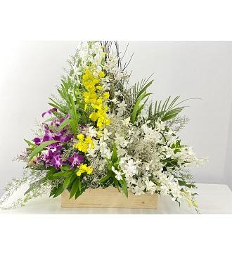 3 Color Orchids extra large arrangement