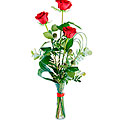 Tercia, 3 Long-Stemmed Red Roses