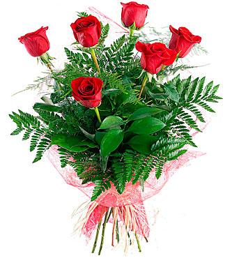 Sexta, 6 Long-Stemmed Red Roses