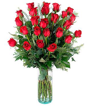 Pasion, 24 Long-Stemmed Red Roses