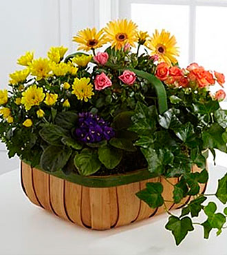 The FTD® Gentle Blossoms Basket