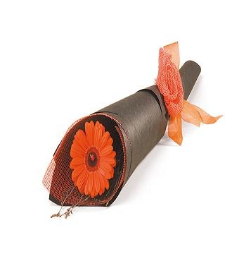 Single Flower - Wrapped