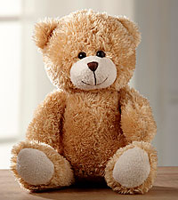 Hugs for You Plush Bear