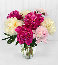 Touch of Blush Peony Bouquet