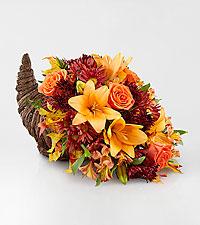 Harvest Comfort™ Cornucopia
