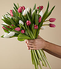 Deluxe New Traditions Tulip Bouquet