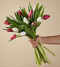 New Traditions Tulip Bouquet