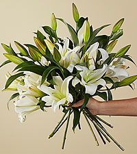 Candy Cane Lily Bouquet