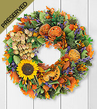 Autumn Walk Dried & Preserved Wreath