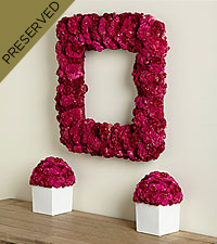 Fuchsia Chic Coxcomb Everlating Wreath & Centerpiece Set
