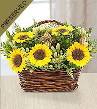 Closer to the Sun Everlasting Sunflower Arrangement