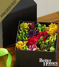 The FTD® Blooming Surprise Everlasting Flower Box by Better Homes and Gardens®