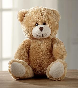 Hugs for You Plush Bear