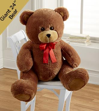 Give Me a Hug Giant Plush Bear