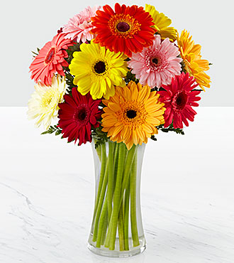 Colorful World Gerbera Daisy Bouquet - 12 Stems - Vase Included
